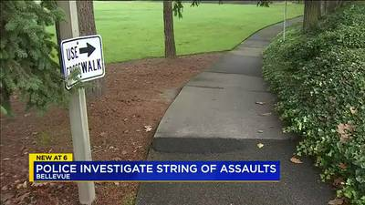 VIDEO: Bellevue police arrest man for string of assaults