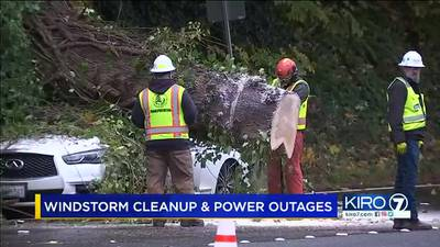 VIDEO: Windstorm cleanup continues Tuesday morning