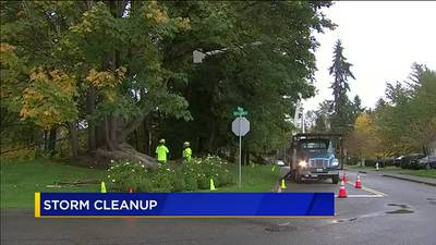 VIDEO: Weekend wind storms create back log of clean ups jobs in North Sound