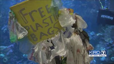 'Reusable Bag Bill' proposes statewide ban on single-use plastic carryout bags