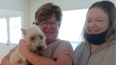 Dog reunited with family after nearly a year