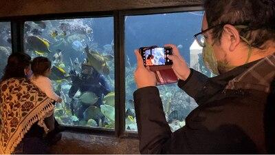 Cancer survivor inspires marine conservation