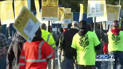 VIDEO: Hundreds of carpenters take to picket lines