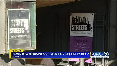 Grants to help fund private security? Fed up Seattle businesses ask for help