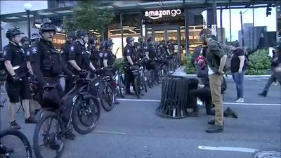 Inspector general's report recommends changes in police protest tactics