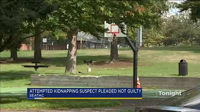 VIDEO: Attempted kidnapping suspect pleads not guilty