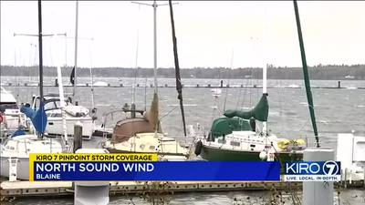 VIDEO: Strong winds wreak havoc in the North Sound