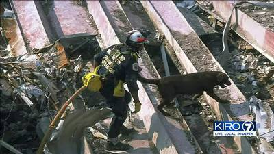 Western Washington search dog handler remembers 9/11 - featured in memorial museum