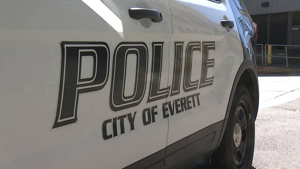 Woman arrested on 96 charges of theft in Everett