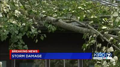 VIDEO: Latest storm coverage at 5:30 p.m.