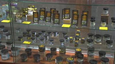 African-Americans largely left out of WA legal cannabis business