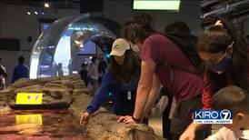 Seattle Aquarium inspires the younger generation