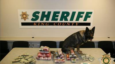 PHOTOS: More than $1M worth of drugs recovered in King County sting