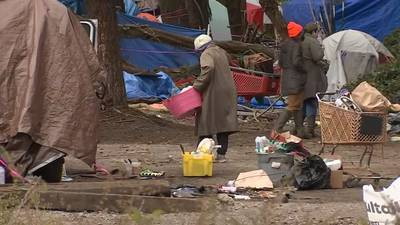 Cleanup of half-mile stretch of homeless encampments underway in Olympia